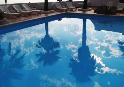 Palm trees are reflected on the surface of a recently serviced pool.
